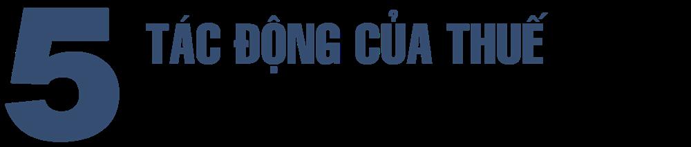 Thuế và phí môi trường, lý luận và thực tiễn áp dụng ở Việt Nam - Ảnh 11