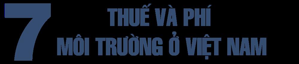 Thuế và phí môi trường, lý luận và thực tiễn áp dụng ở Việt Nam - Ảnh 13