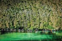 Bảo tồn vùng đất ngập nước để phát triển bền vững