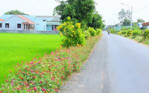 Bảo vệ môi trường nông thôn: Cần thêm những cái bắt tay trách nhiệm!