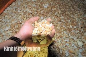 Hà Tĩnh: PV Kinh tế Môi trường phối hợp với công an bắt đoàn xe chở đá bạc 'lậu' (Kỳ 3)