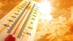 Biến đổi khí hậu có thể khiến mùa hè kéo dài tới 6 tháng?