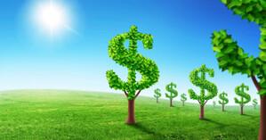 Doanh nghiệp trụ lại trong bối cảnh đại dịch nhờ định hướng con đường phát triển bền vững