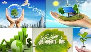 Gắn lợi ích kinh tế với bảo vệ môi trường: Xu thế phát triển tất yếu vì màu xanh bền vững