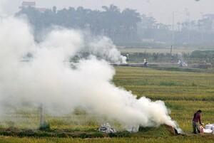 Hà Nội 'bất lực' trước việc đốt rơm rạ ở các huyện ngoại thành?