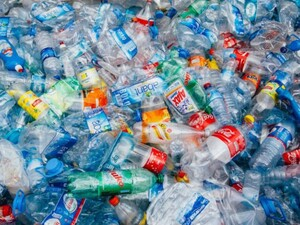 Rác thải nhựa có thể chế tạo thành hương liệu vani