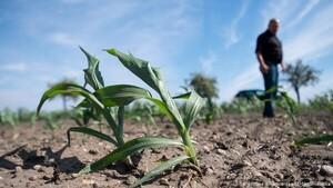 Sản xuất lương thực tại Đông Nam Á có thể bị đe dọa bởi biến đổi khí hậu