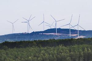 EU cam kết tăng thêm 4 tỉ euro cho các dự án khí hậu