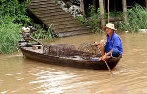Nước nổi thấp, triều cường cao: Những thách thức không nhỏ cho ĐBSCL