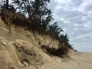 Hàng trăm hộ dân bị đe dọa vì bờ biển liên tục sạt lở, xâm thực