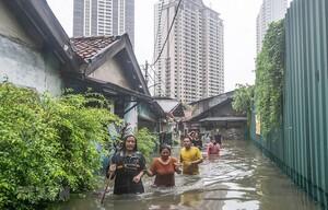Cảnh báo hàng triệu người sẽ phải đi tị nạn do biến đổi khí hậu