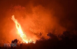 Cháy rừng khiến Indonesia thiệt hại kinh tế hơn 5 tỉ USD
