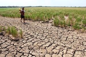 Cảnh báo hạn hán, thiếu nước diện rộng ở khu vực Trung Bộ